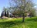 Bodenseeregion im Frühling - panoramio.jpg