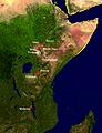 Boisei east Africa.jpg