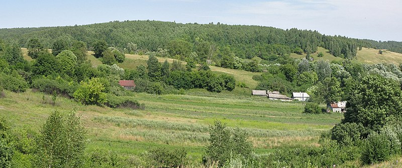 File:Bolshoye Gorodkovo, Kurskaya oblast' Russia, 307624 - panoramio.jpg