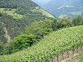 Bolzano (4).jpg
