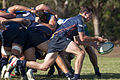 Bond Rugby (13373724723).jpg