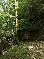 Bosque Mitológico.jpg