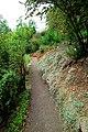 Botanischer Garten - panoramio (4).jpg