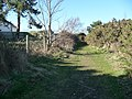 Bournemouth , Grassy Path, Fernheath Valley - geograph.org.uk - 1746260.jpg