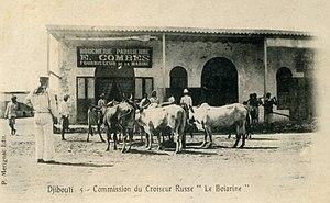 Russian cruiser Boyarin (1901) - Djibouti 1902. Cattle destined for Boyarin