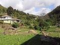 Brasil Rural - panoramio (53).jpg