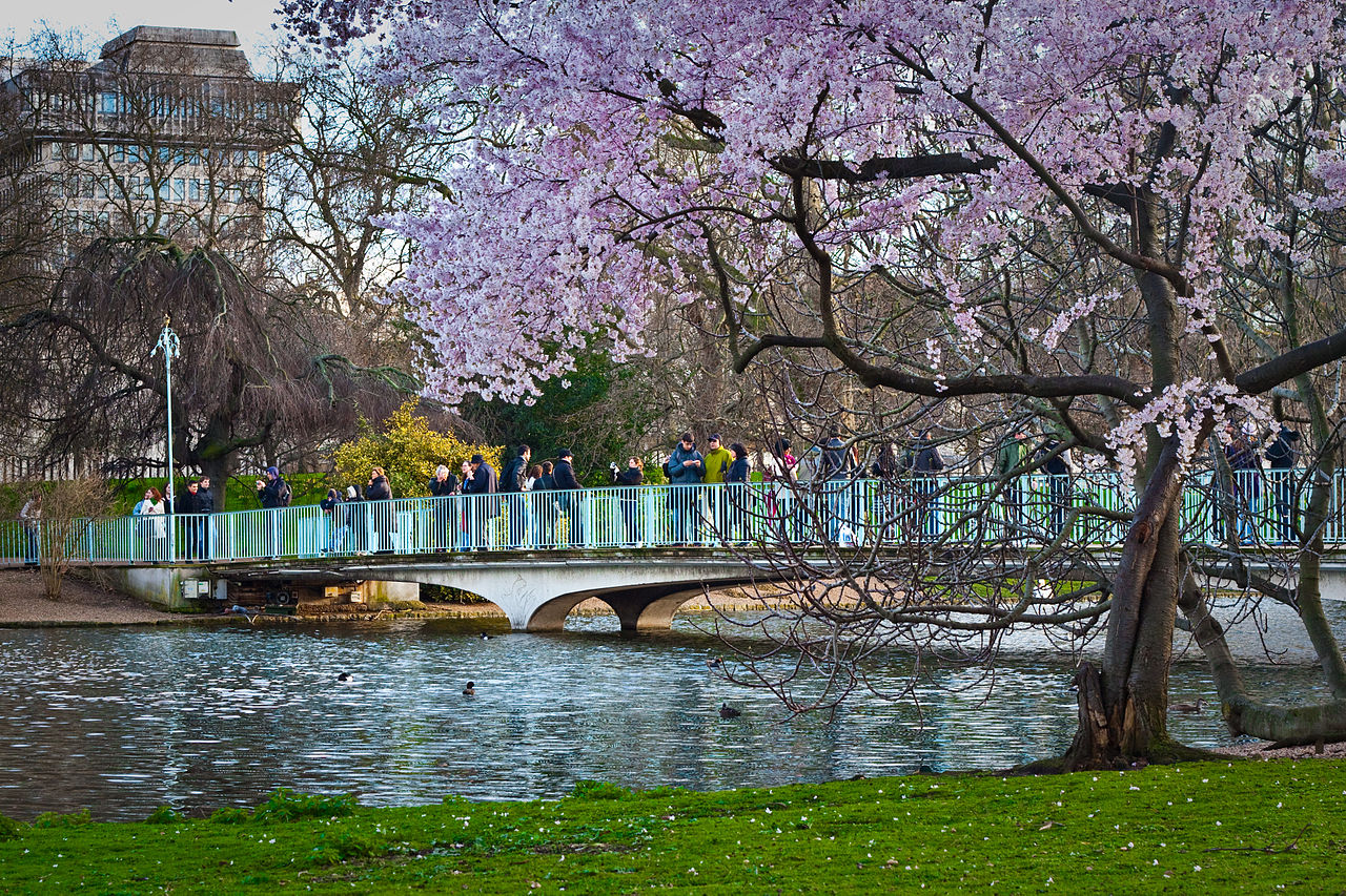 File:Bridge Of Spies, St James's Park.jpg - Wikimedia Commons