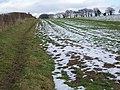 Bridleway, Ansty Hill - geograph.org.uk - 1159507.jpg