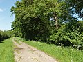 Bridleway near Henwood Farm - geograph.org.uk - 442929.jpg