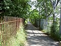 Bridleway near Shotton - geograph.org.uk - 507151.jpg