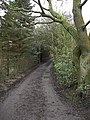 Bridleway to Windy Bottom Farm - geograph.org.uk - 1177855.jpg