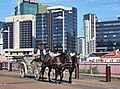 Brisbane - panoramio - Tanya Dedyukhina.jpg