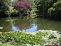 Butchart-gardens-001.jpg