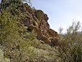 Butcher Jones Trail - Mt. Pinter Loop Trail, Saguaro Lake - panoramio (134).jpg