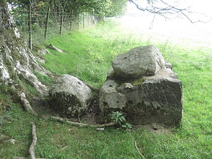 Llanelidan - Bwrdd y Tri Arglwydd