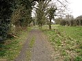 Byway to Claydon, looking west - geograph.org.uk - 1229104.jpg