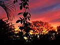 Céu colorido (3808369815).jpg