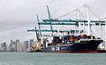 CMA CGM White Shark (ship, 2007) 002.jpg