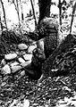 COLLECTIE TROPENMUSEUM Beeld in het bos omgeving Buitenzorg TMnr 60016464.jpg