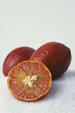 Blood lime - Blood limes