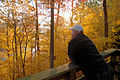Cabin6 deck view Fall (6341312111).jpg