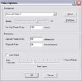 CamStudio Vid Option defaults.png