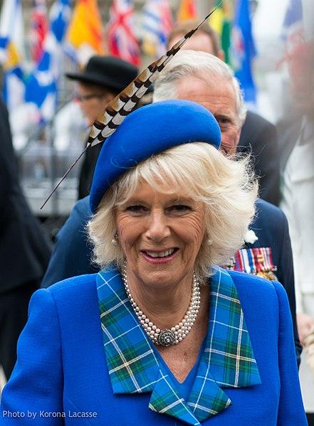 Герцогиня Корнуольская не хочет называться Королевой после вступления принца Чарльза на престол