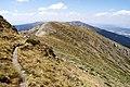 Camino - panoramio (13).jpg