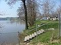 Campingplatz am Badsee - panoramio.jpg