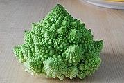 Cauliflower Fractal AVM.JPG