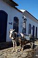 Cavalo em Paraty.jpg