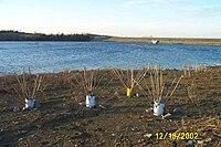 Cedar creek lake kentucky wikipedia for Cedar creek lake fishing