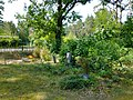 Cemetery in Steinfurt (Gosen-Neu Zittau).jpg