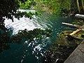 Cenote AZul - panoramio.jpg