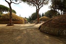 Photographie montrant un chemin entouré de pins méditerranéens avec un tumulus circulaire sur le côté gauche.