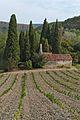 Chapelle de Gléon - 2016-09-04 - 02.jpg