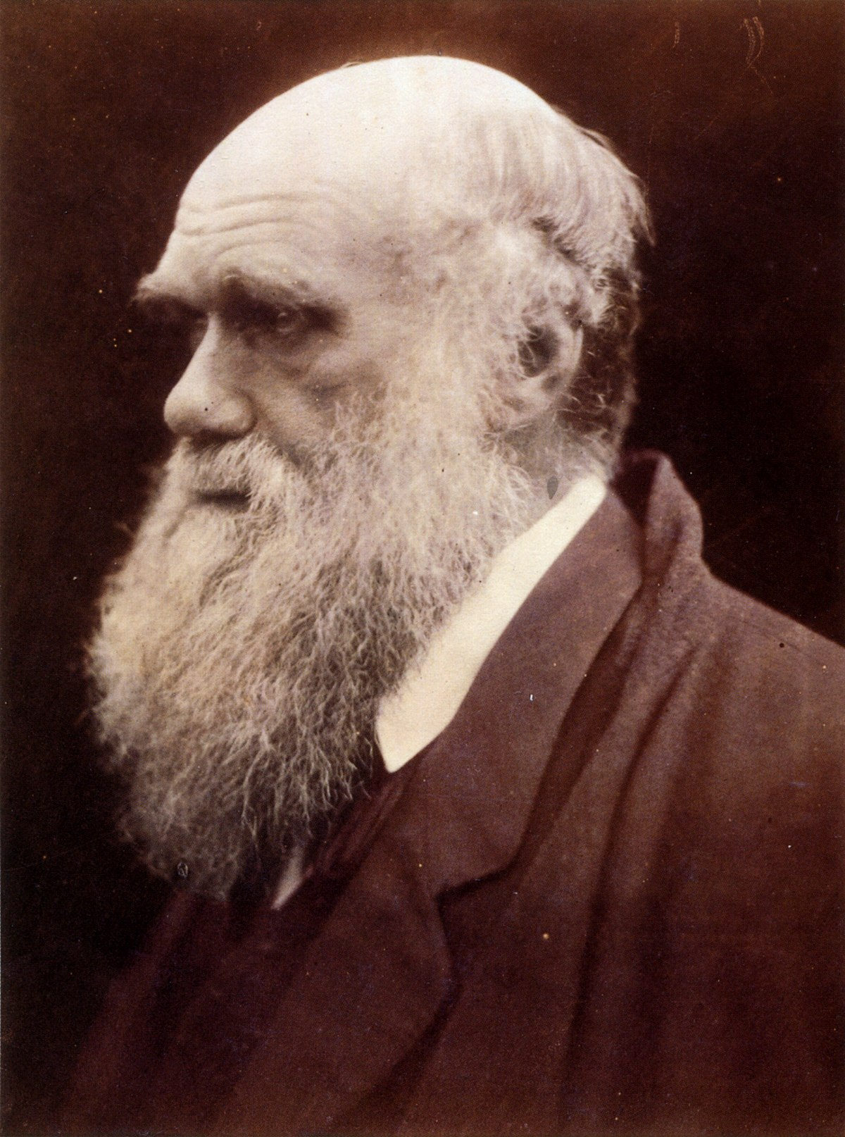 Religious views of Charles Darwin - Wikipedia