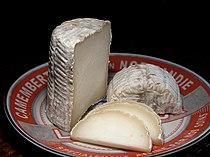 Cheese 71 bg 082006.jpg