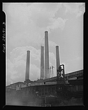 Smokestacks of a chemical factory near Institu...