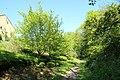 Chemin de Lunezy à Ballainvilliers entre les communes de Villejust et Saulx-les-Chartreux le 4 mai 2016 - 06.jpg