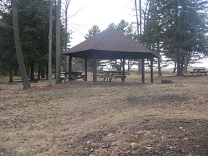 Cherry Springs State Park - The other CCC-built picnic pavilion has a hexagonal roof and is in the camping area.