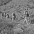 Chinese PWs Operation Commando Oct 1951 (AWM HOBJ2431).jpg