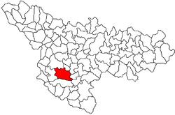 Vị trí của Ciacova