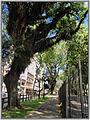 Cidade de Curitiba - Brazil by Augusto Janiski Junior - Flickr - AUGUSTO JANISKI JUNIOR (26).jpg