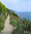 Cinqueterre hiking02.jpg