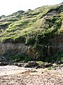 Cliff erosion - geograph.org.uk - 969463.jpg