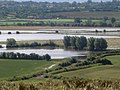 Close-up of summer floods at Longdon Marsh - geograph.org.uk - 479456.jpg