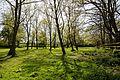 Close (enclosure) Magdalen Laver Essex England 2.jpg
