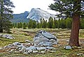 Cloudy Morning, Tuolumne Meadows, Yosemite 5-20-15a (18354659201).jpg