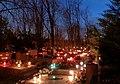 Cmentarz Powązkowski w Warszawie - panoramio.jpg